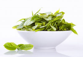 green tea is one of the recommended herbs for sleep apnea