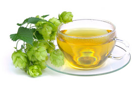 Hops in tea are good herbs for sleep