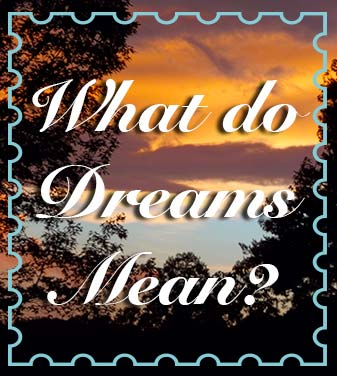 What Do Dreams Mean The Guide The Child And A Monkey