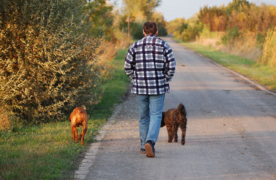 Taking a daily walk could be a sleep apnea cure.